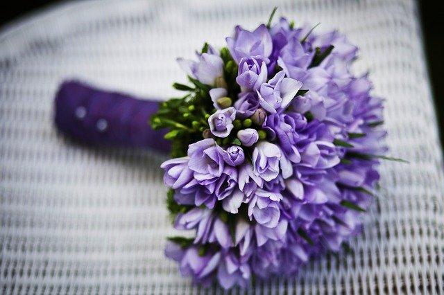 fialová kytka
